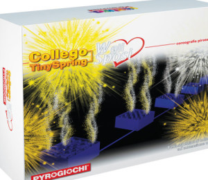 collego-sposi-500x500