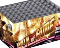 walkoffame-500x500